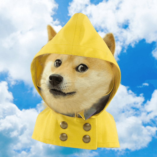 wow such weather