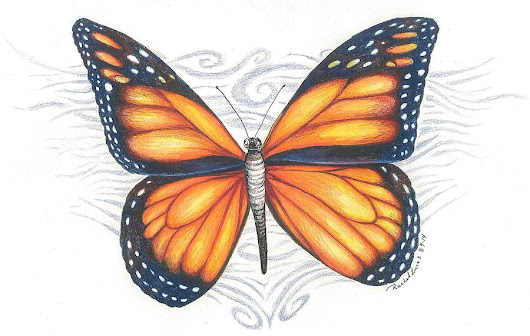 Monarch Butterfly by Rachel Lucas-Bertsch