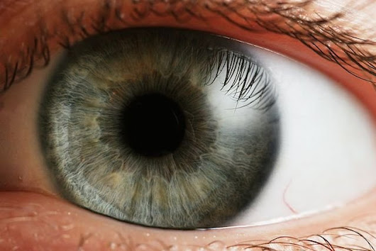 Dietary Experiment Claims to Successfully Extend Human Vision Into Near Infrared