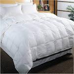 White Down Cotton Cambric Comforter - King