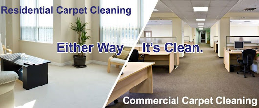 Holistic Carpet Cleaning: Keeping the Right Shampoo