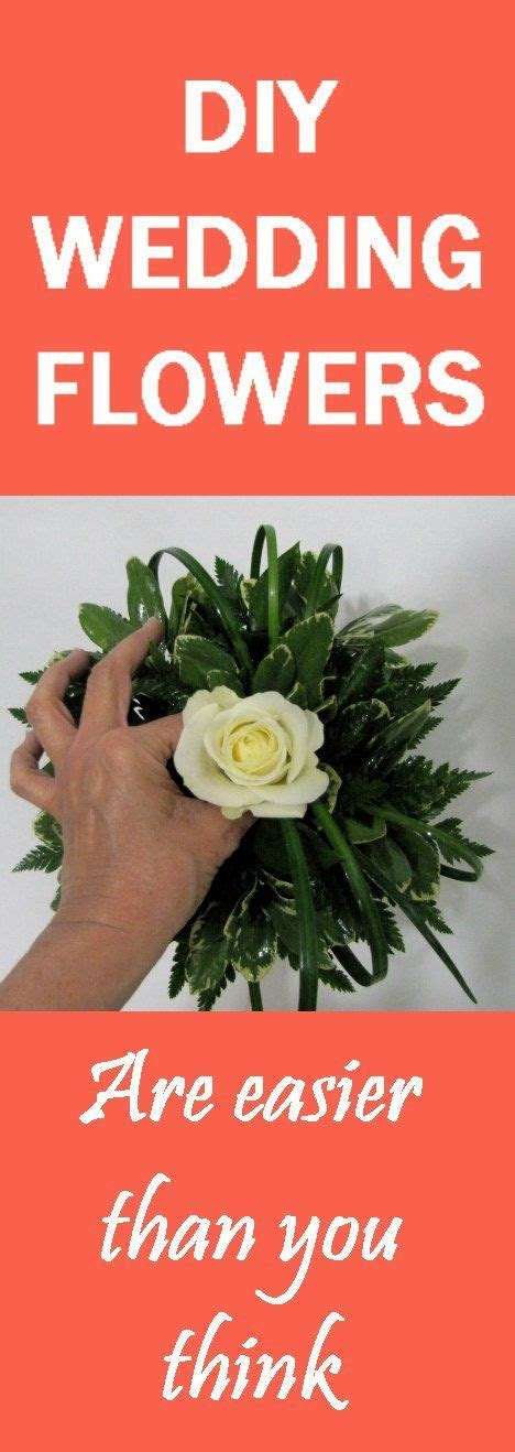 1000  images about Cheap Bulk Flowers on Pinterest