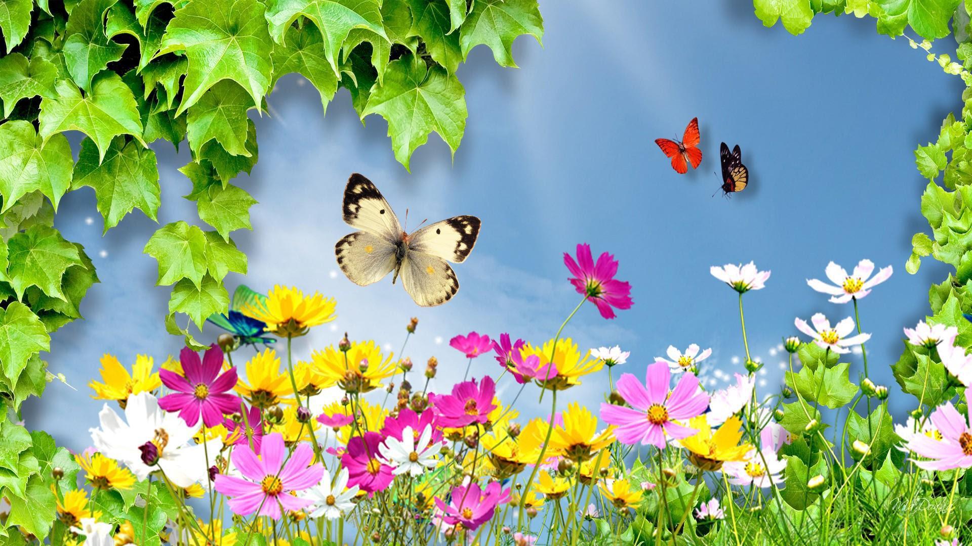 Gambar Bunga Indah Untuk Wallpaper