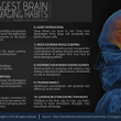 WHO - List out the Habits that damages our BRAIN! - Kalvi Kalanjiam