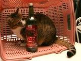 安ワイン「トップバリュの」