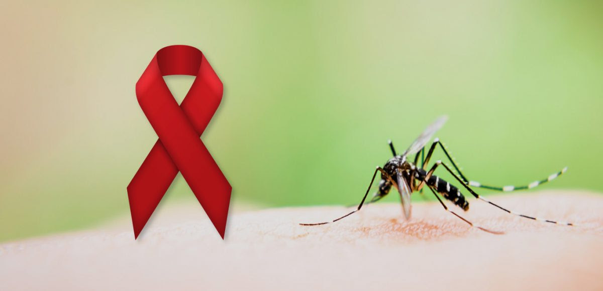 Can Zika Mosquitoes Occasionally Transmit Hiv Analizir