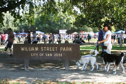 Bark in the Park San Jose: Largest Dog Festival in the US