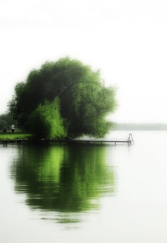 Orillia - Couchiching Emeralds In Mist; a green and white morning at Couchiching Beach Park