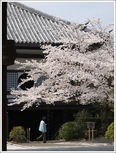 http://www.flickr.com/photos/yousuke_orenikki/2392204055/