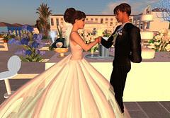 Thorne-Darwin Wedding - Toast