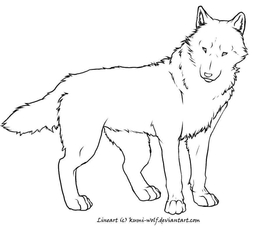 Realistic Wolf Coloring Pages - Coloring Home