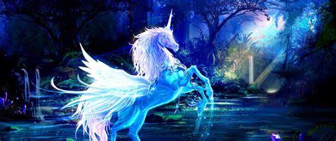 unicorn fantasy water forest night magic wallpaper