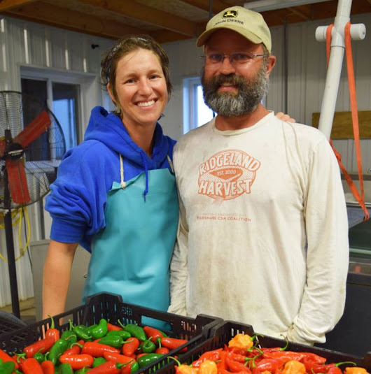 Cate and Mat Eddy: A Rainy Day at Ridgeland Harvest - WORT 89.9 FM
