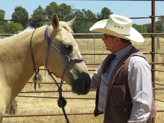 Sacramento Wild Horse Program with Joe Misner ⋆ The Whoa Podcast