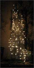 Outdoor Tree, dark version
