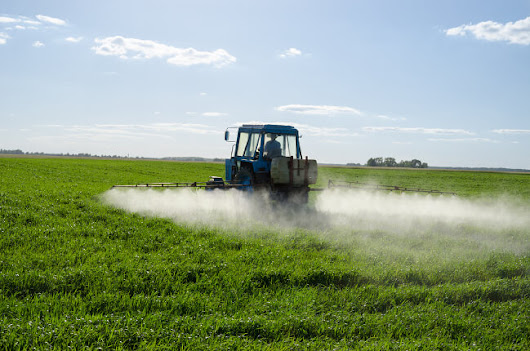 Despite activists' claims about glyphosate dangers, there's no cancer spike in Argentina | Genetic Literacy Project