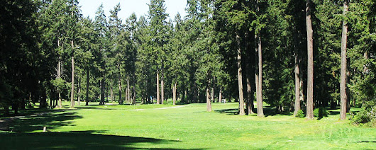 Tacoma Golf - Lake Spanaway Golf Course - 253 531 3660
