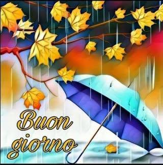 Buongiorno Piove Il Buongiorno