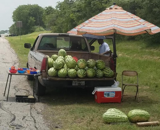 What You Need To Know About Roadside Vendors Today