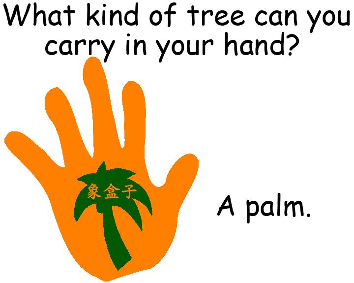 palm 手掌 手心 棕櫚樹