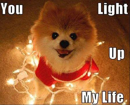 You Light Up My Life Picture Quotes