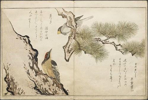 Woodpecker + Japanese Grosbeak (Mammemawashi)