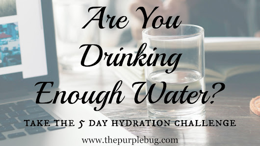 Hydration Challenge - Are You Drinking Enough Water? - The Purple Bug Project