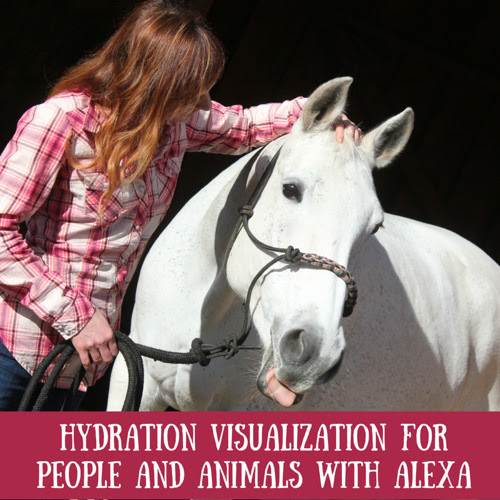 Hydration Visualization with Alexa for you and your animals