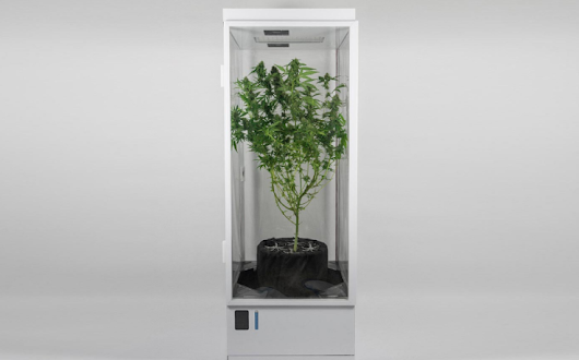 The First Fully Automated Grow Box That Uses Organic Soil | BioLinked Blog