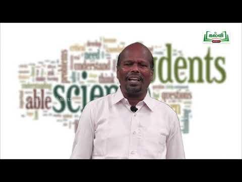 7th Science அன்றாட வாழ்வில் தாவரங்கள் அலகு 1 Kalvi TV