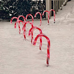 Holiday Time 10 Candy Cane Path Lights with 50 Clear Lights, White