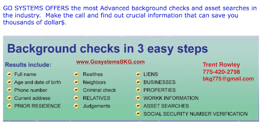 BACKGROUND CHECK - Blue Systems International