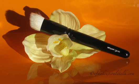 Wayne Goss 01 Brush review, photos and comparisons. - If Makeup Could Talk