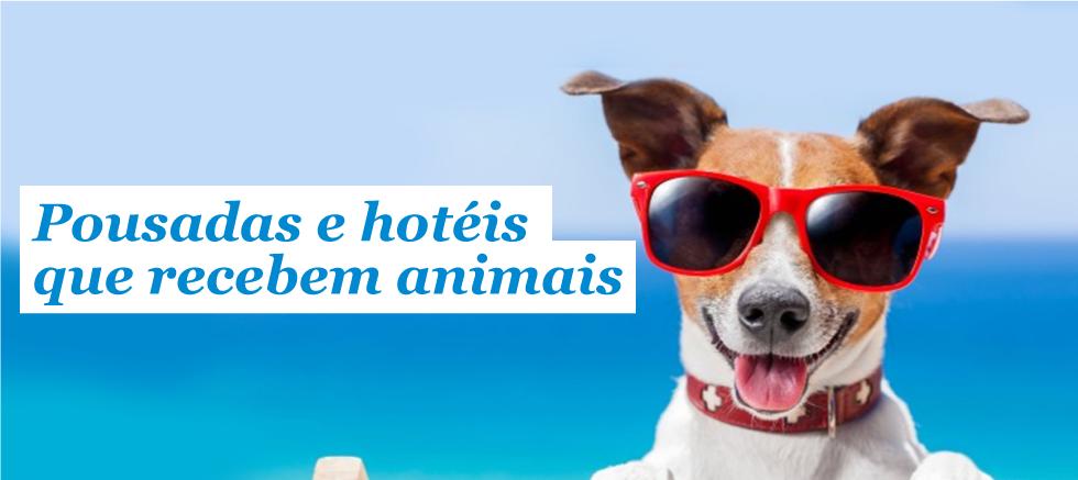 Resultado de imagem para imagens gratuitas de hospedagem para animais