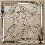 CU Hand Drawn For the love of Garden Birds Brush Pack