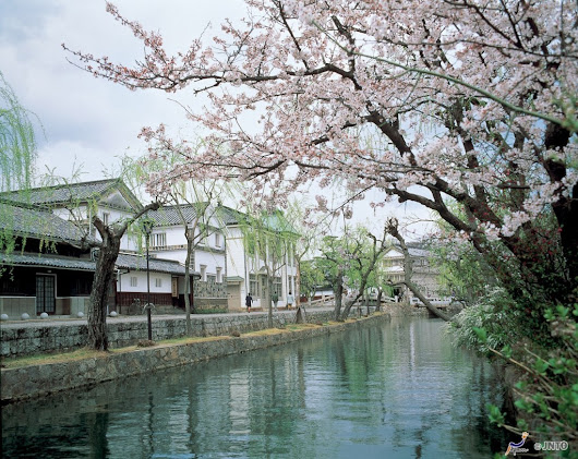 14 DAY DISCOVERY JAPAN TOUR - Tweet World Travel
