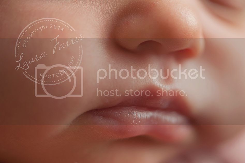 photo meridian-idaho-newborn-baby-photographers_zpsd9f00e9c.jpg