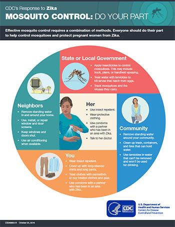 Controle de mosquitos: faça sua parte – miniatura da ficha técnica