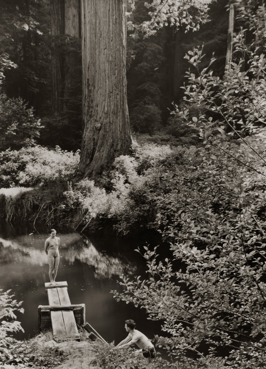 Una piscina natural en Prairie Creek Park en California, junio 1938.Photograph por B. Anthony Stewart, National Geographic