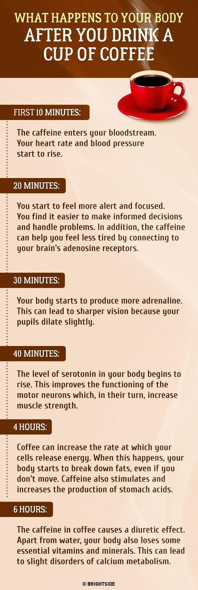Full Guide What Happens to Your Body after a Cup of Coffee
