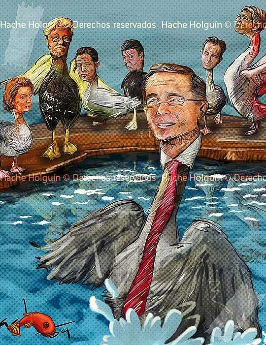 Ilustración política, patos al agua