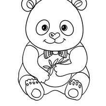 Dibujos Para Colorear Bebe Oso Panda Eshellokidscom