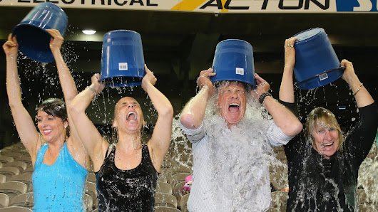 Ice Bucket Challenge leads to gene discovery
