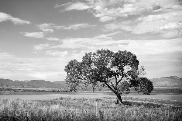 Black Oak, Highway 76