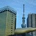 Skytree & Golden Crap 2