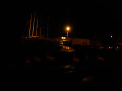 Bray Harbour swans at night