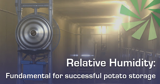Controlling relative humidity conditions for stored potatoes | IVI Blog