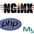 I will install nginx, phpfpm and mysql on your Linux VPS/Server for $5