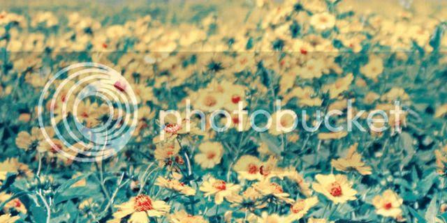 photo 2_FLOWER-GIRL_PULP-ART-BOOK_860_860_zpseuhie4ze.jpg