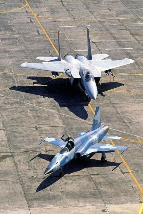 F-5 y F-15